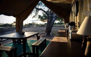 Dining tent on this kalahari volunteer program